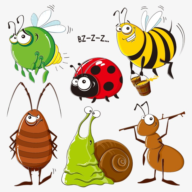 Les insectes au jardin |